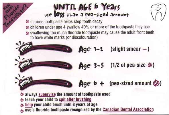 Dabs of toothpaste on brush for different age groups